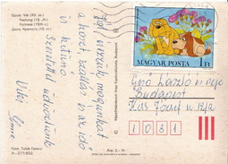 Postal History Cover: Hungary With Cartoons
