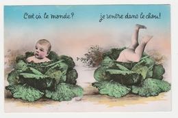 Carte Fantaisie Bébés Dans Le Chou N°3999 En 1962 - Babies