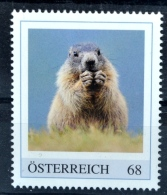 Pi076 Murmeltier, Marmota Marmota, Marmot, Marmotte, Tiere, Animals, AT 2017 ** - Ohne Zuordnung