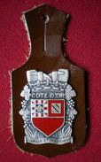 INSIGNE POMPIERS (pucelle)     SAPEURS POMPIERS Département De La Cote D'Or. - Pompieri
