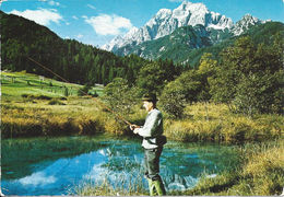 Stamped/Used Postcard - Zelenci, Izvir Save Dolinke
