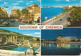 Stamped/Used Postcard - Souvenir Of Cirenica - Fetturi Co. - Libya