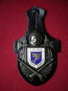 INSIGNE POMPIERS (pucelle)     SAPEURS POMPIERS Département De La Loire(42) - Pompieri