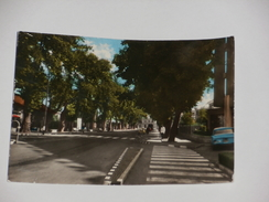 MODENA - Carpi - Viale Della Stazione - 1964 - Carpi
