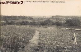 NEAUPHLE-LE-CHATEAU VUE SUR PONTCHARTRAIN CULTURE DE LA PENSEE AGRICULTURE 78 - Neauphle Le Chateau