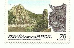 1999 - Spagna 3196 Felini