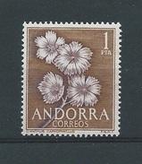 Andorra - Spaans         Y /T      62        (XX)