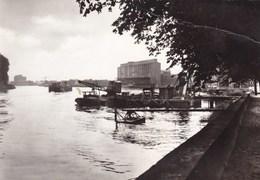 Baasrode Scheldezicht (pk36198) - Dendermonde