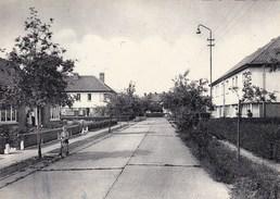 Baasrode Hof Ten Rode (pk36199) - Dendermonde