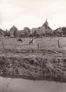 Denderbelle, Algemeen Zicht Met Kerk (pk36205) - Lebbeke