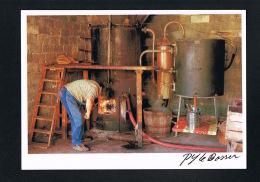 ATELIER De BOUILLEUR De CRU- BUIS - Photo LE BOSSER 1988- Recto Verso- Paypal Sans Frais - - Vigne