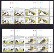 Falkland Islands Dependencies 1985 Albatross 4v Bl Of 4 (large Margin)  ** Mnh (35765) - Zuid-Georgia