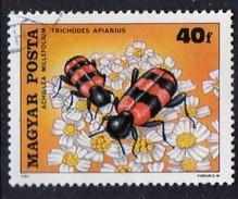 PIA - UNGHERIA :  1980 : Impollinazione Dei Fiori : Achiella Millefolium E Trichodes Apiarius - (Yv 2703)
