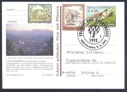 Austria 1991 Postal Stationery Card DORNBIRN Fauna Fanghaft Grashopper (Mantispa Styriaca Spare Time Fair Freizeit Hobby