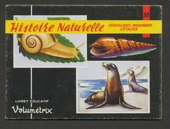 VOLUMETRIX N° 30 - HISTOIRE NATURELLE - COQUILLAGES-MOLLUSQUES-CETACES - Livres, BD, Revues