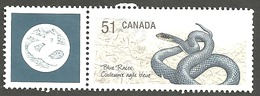 Sc. # 2173c Endangered Species #1, Blue Racer Snake, Ex. Souvenier Sheet Single With Tab Used 2006 K241