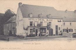 Souvenir De Spontin - Hôtel Du Cheval Blanc (café, Top Animation, Jules Pesesse, Rare, Précurseur)