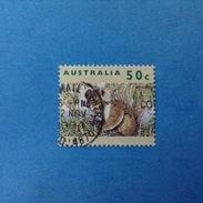 1992 AUSTRALIA FRANCOBOLLO USATO STAMP USED - Fauna Animali Koala 50 C