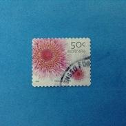 2005 AUSTRALIA FRANCOBOLLO USATO STAMP USED - Flora Fiori Swamp Daisy 50 C