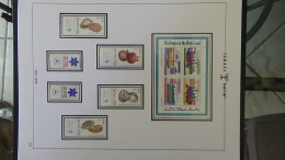 C Grosse Collection ** Et Obl D'ISRAËL En Classeur J. SCHEPS Entre 1948 Et 1978. Classeur 1/5. Voir Commentaires - Israel