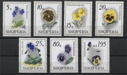 ALBANIA, VIOLETS, FLOWERS 1969, NH ET - Albania