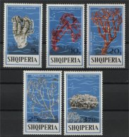 ALBANIA, CORAL 1975, NH SET - Albanien