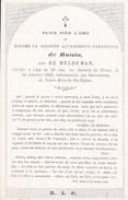 Château De FEROZ La Baronne Alexandrine De ROISIN Née DE MELDEMAN  56 Ans 1863 Souvenir Mortuaire Porcelaine DP Noblesse - Décès