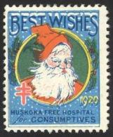 Canada Cinderella Cc4540 13 Used (b) Christmas Seal 1920 Muskoka Free Hospital For Consumptives - Local, Strike, Seals & Cinderellas