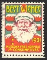 Canada Cinderella Cc4540 14 Mint Christmas Seal 1921 Muskoka Free Hospital For Consumptives - Local, Strike, Seals & Cinderellas