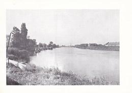 Dendermonde, Scheldezicht (pk36258) - Dendermonde