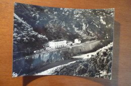 9984 BALVANO (POTENZA) - LA STAZIONE - Potenza