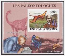 112 Comores 2009 Dinosaurus Dinosaur S/S MNH Imperf