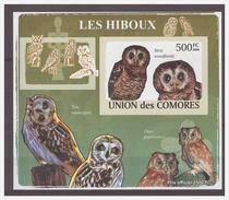 185 Comores 2009 Uilen Owls Eule Hiboux S/S MNH Imperf