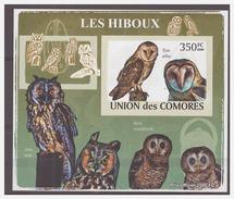 186 Comores 2009 Uilen Owls Eule Hiboux S/S MNH Imperf