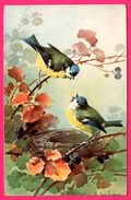Illustration Couleurs Signée KLEIN - Moineaux - Oiseaux - Nid - Fleurs - Mûres - Klein, Catharina