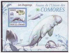 520 Comores 2009 Zeekoe Lamentijn Sea-cow S/S MNH Imperf