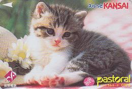 Rare Carte Prépayée Ancienne Japon - ANIMAL - CHAT Fleur Chapeau / 2000 - CAT Japan Prepaid Pastoral Card - KATZE - 3990 - Gatos