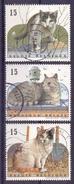 Belgie  - 1994 - OBP  - 2522/24 - Katten - Cats - Kitten -  Gestempeld
