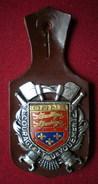 INSIGNE POMPIERS (pucelle)     SAPEURS POMPIERS Département De L'orne (61) - Pompieri