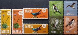 Malta, 1981, Birds, Owl, MNH