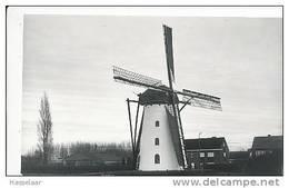 Ertvelde - Stenemolen (anno 1798) - Evergem