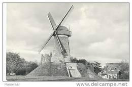 Evergem (Wippelgem) - Neytmolen