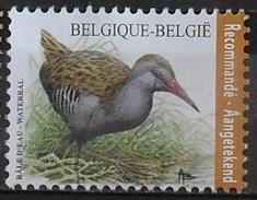 België 2017 Waterral - Râle D'eau - A. Buzin