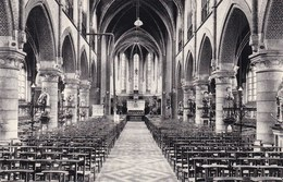 St Gillis (Dendermonde) Kerk St Egidus (pk36350) - Sint-Gillis-Waas