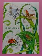 France 2017 - Série Nature : Les Insectes . Bloc Oblitéré