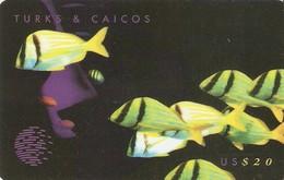*TURKS & CAICOS - 108CTCC* -  Scheda Usata
