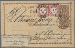 Deutsches Reich - Brustschild: 1875, Ganzsachen-Karte ½ Gr. Mit GANZSACHEN-AUSSCHNITT  ½ Gr. Und Paar 1 Gr