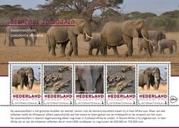 Nederland / The Netherlands - Postfris / MNH - Sheet Bedreigde Dieren, Olifant 2017 - Ongebruikt