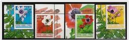 Cipro/Chypre/Cyprus: Specimen, Fiori Diversi, Différentes Fleurs, Different Flowers