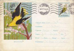 60758- GOLDEN ORIOLE, BIRDS, COVER STATIONERY, 1961, ROMANIA